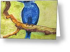 Black As Blue Bird Greeting Card