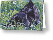 Black Australian Kelpie Greeting Card by Lee Ann Shepard