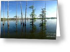 Black Bayou Lake 2 Greeting Card