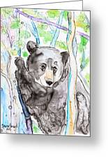 Black Bear On The Bruce Greeting Card