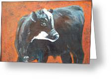 Black Beauty Greeting Card by Jean Ann Curry Hess