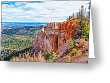 Black Birch Canyon Greeting Card