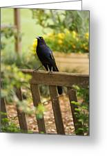 Black Bird Greeting Card