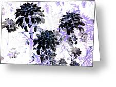 Black Blooms I I Greeting Card