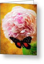 Black Butterfly On Peony Greeting Card