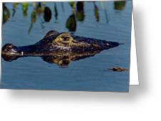 Black Caiman Greeting Card
