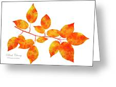 Black Cherry Pressed Leaf Art Greeting Card