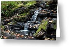 Black Creek Falls In Autumn, 2016 Greeting Card