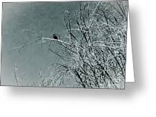 Black Crow White Snow Greeting Card