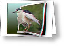 Black Crowned Night Heron - Use Red-cyan 3d Glasses Greeting Card
