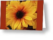 Black Eyed Susan Medley V3 Greeting Card