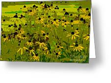 Black Eyed Susan Work Number 21 Greeting Card