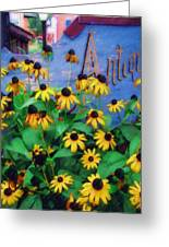 Black-eyed Susans At The Bag Factory Greeting Card