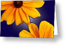 Black-eyed Susans On Blue Greeting Card
