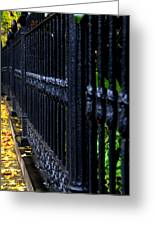Black Fence Greeting Card