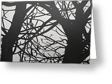 Black Forest Greeting Card
