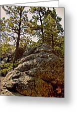 Black Hills Boulders Greeting Card