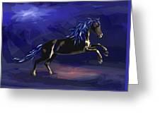 Black Horse At Night Greeting Card