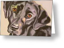 Black Lab Aint No Cure For Love Greeting Card