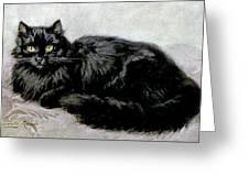 Black Persian Cat Greeting Card