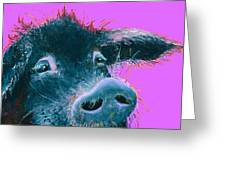 Black Pig Painting On Purple Greeting Card