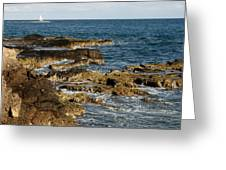 Black Rock Point And Sailboat Greeting Card