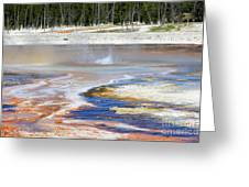 Black Sand Basin Geysers In Yellowstone National Park Greeting Card