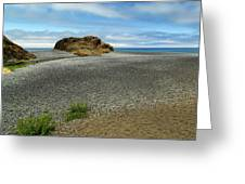 Black Sand Beach On The Lost Coast Greeting Card
