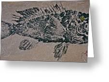 Black Sea Bass - Grouper - Rockfish Greeting Card