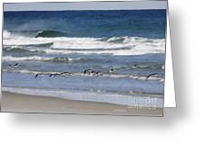 Black Skimmers In Ponce Greeting Card