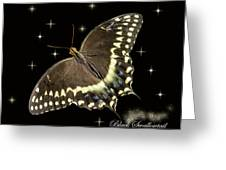 Black Swallowtail On Black Greeting Card