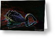 Black Swan In Color Greeting Card