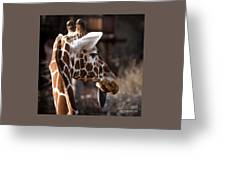 Black Tongue Of The Giraffe Greeting Card