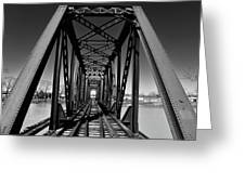 Black Tracks Greeting Card