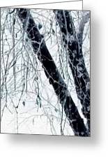 Black Tree White Night Greeting Card