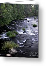 Black Waters Greeting Card