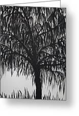 Black Willow Greeting Card