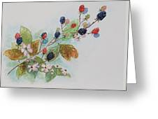 Blackberry Composition Greeting Card