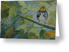 Blackburnian Warbler I Greeting Card