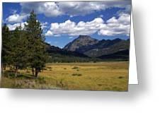 Blacktail Plateau Greeting Card