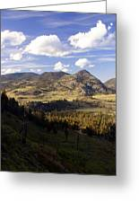 Blacktail Road Landscape Greeting Card