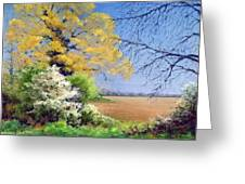 Blackthorn Winter Greeting Card