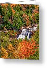 Blackwater Falls Wv Greeting Card