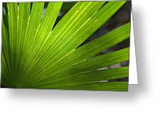 Blades Of Green Greeting Card