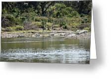 Blanco River - Texas Greeting Card