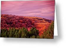 Blazing Autumn Greeting Card