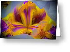 Blazing Heart Of An Iris Greeting Card
