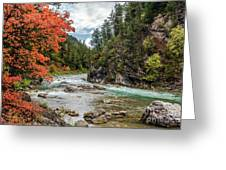 Blazing Red Mountain Maple, Greys River Greeting Card