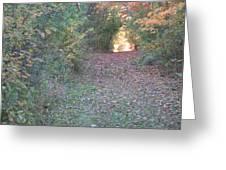 Blazing Trail Greeting Card
