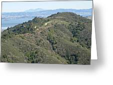 Blithedale Ridge On Mount Tamalpais Greeting Card